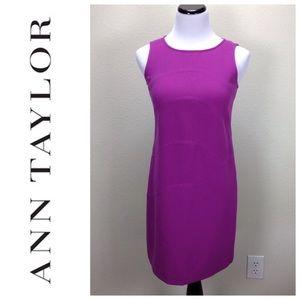 Ann Taylor Purple Sleeveless Sheath Exposed Zipper